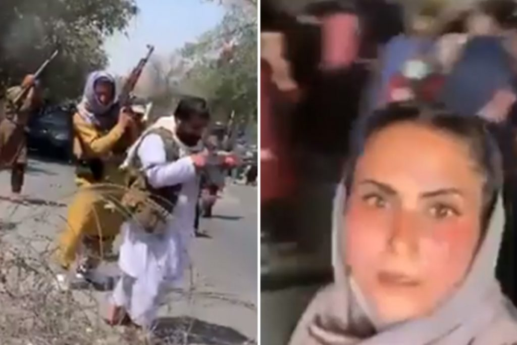 Taliban fighters 'spherical up ladies into automobile park like cattle' & open fireplace as protesters run for his or her lives